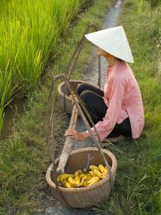 Seated woman with produce, Vietnam