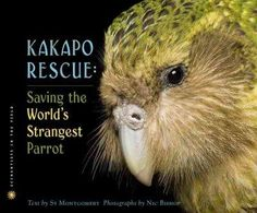 On remote Codfish Island off the southern coast of New Zealand live the last ninety-one kakapo parrots on earth. These trusting, flightless, and beautiful birdsthe largest and most unusual parrots on