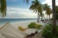 Hammock on the beach - Mirihi Island, Maldives