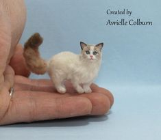 Hand sculpted, furred, and painted by miniature artist Avrielle Colburn. Polymer Clay Cat, Polymer Clay Animals, Clay Cats, Mini Photo, Dollhouse Miniatures, Pugs, Sculpting, Fish, Dolls