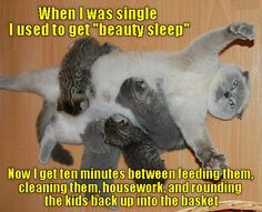 Moms are the masters of power naps http://cheezburger.com/9047792640
