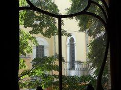 Casa Gorky, il giardino dalla vetrata (Foto: Simonetta Sandri)