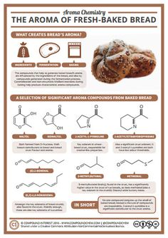 Exam Masters Tutoring Service - Fun Chemistry Infographic: Aroma Of Fresh-Baked Bread