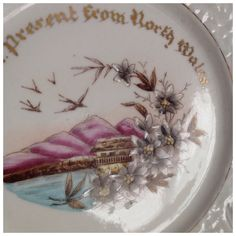 Vintage Collectable Plate 'A Present From North Wales'.  Made in Germany by BoBisBitsofVintage on Etsy
