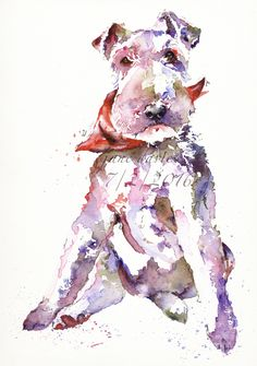 Pet portrait of a fox terrier painted in watercolour by artist Jane Davies