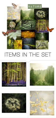 """""""Nature"""" by putterpaws ❤ liked on Polyvore featuring art"""