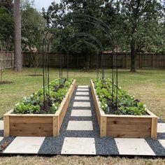 Backyard Vegetable Gardens, Veg Garden, Backyard Garden Design, Vegetable Garden Design, Garden Boxes, Backyard Landscaping, Outdoor Gardens, Raised Garden Bed Design, Farm Gardens