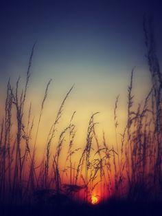 #sunset #yellow #navy
