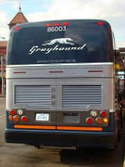 Each new bus has the potential of removing up to 50 autos from the highway New Bus, Bus Coach, Bus Travel, Busses, Rear View, Brooklyn, Boards, United States, Usa