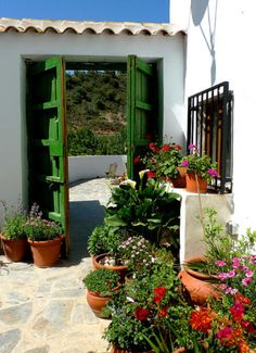 Love the bright green door for the entry way! So mediteranean