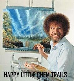 All those little chem trails, so durn cute!