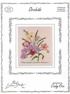 Gallery.ru / Фото #1 - Orchids - Dona