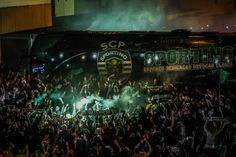 Alvalade - Twitter Search