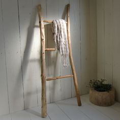 drift wood ladder