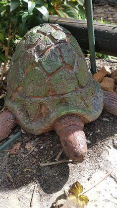 Tortoise, Turtle, Sculpture, Ceramics, Animals, Tortoise Turtle, Ceramica, Turtles, Turtles