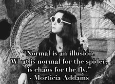 """""""Normal is an illusion. What is normal for the spider, is chaos for the fly."""" Morticia Addams"""