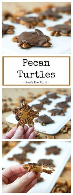 These Pecan Turtles are quick, easy and elegant. They are the perfect mix of sweet and salty and make a great thank you or neighbor gift! #dessert #candy #christmascandy #pecans #caramel #chocolate #candyturtles #3 ingredient #recipe #numstheword #easy #christmas #foodgift