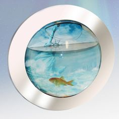 Keep fish in your home regardless of space with the brilliant Space Fish Tank. Fabulously individual and decorative, the Space Fish Tank is great for keeping fish where there's limited space or in busy homes