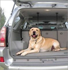 """Pet Partition by PortablePET - The Heininger PortablePET Pet Partition is the safe way for pet owners to share drive time with their furry friends without compromising their attention to the road around them. With it pets are safely, yet comfortably confined to a spot in the back seat of your vehicle. Easy to install and adjustable from 34"""" to 60"""" in width and 23"""" to 45"""" in height, the PortablePET Pet Partition is nearly universal in application making it perfect for virtually any SUV…"""