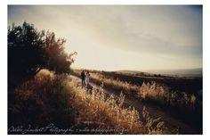 Shani & Angelo #AdeleJoubertPhotography Vineyard, Country Roads, Weddings, Amp, Outdoor, Vine Yard, Outdoors, Bodas, Wedding