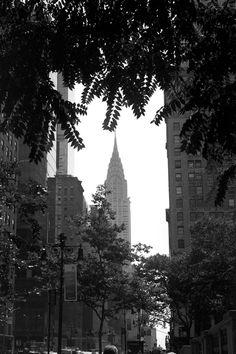 New York | Ann Street Studio - Bryant Park