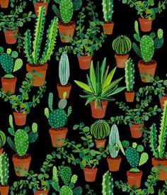 Sian Keegan   cactus illustration