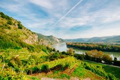 This day trip takes you from Vienna to the Wachau, a picturesque valley along the Danube, known for its excellent wine. Day Trips From Vienna, Vienna State Opera, Danube River, Bus Travel, Medieval Castle, Boat Tours, Walking Tour, World Heritage Sites, Beautiful Landscapes