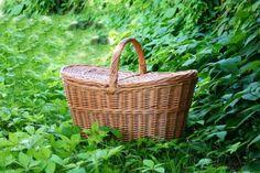 Baskets / Winston wiklinowy kosz piknikowy