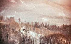Zlatá hodinka #beskydy #lysahora #raskovice #mountain #mountains #goldenhour #landscape #nature #lovenature #sunset #explore #instagood #instadaily #from #ostrava #ostravacity #by #janjasiok