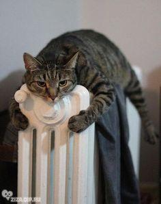 Ahhhh, warm!!!