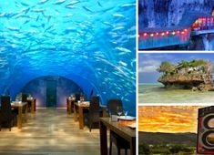 Overwater villas, incredible white-sand beaches and spectacular sunsets make the Maldives one of the top romantic destinations in the world. Best Places To Travel, Places To Visit, Underwater Restaurant, Fall Wreaths, Door Wreaths, Burj Al Arab, Romantic Destinations, Exotic Places, Menorca