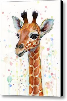 Baby Giraffe Watercolor Canvas Print / Canvas Art By Olga Shvartsur
