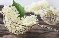 Syrup, juice, tea, honey, soup and fried blackberry blossoms Superfood, Queen Annes Lace, Big Meals, Elderflower, Food Trends, Kraut, Decorative Bowls, Food And Drink, Herbs