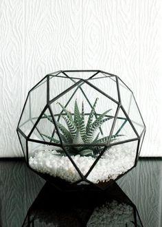 Terrarium en verre géométriques grande / par WhiteLiesJewelry