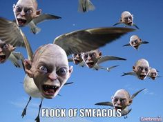 Flock of Smeagols ... this made me laugh