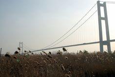 Runyang Bridge, Jiangsu, China  The Runyang Bridge crosses the River Yangtze in China's Jiangsu Province. It connects two parts of the expressway that links the behemoth cities of Beijing and Shanghai.