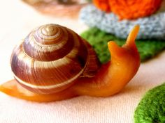 beeswax snail. I think i will trick the kids and make it out of caramel and eat it :)