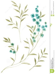 watercolor-illustration-flowers-simple-background-35106532.jpg (973×1300)