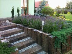 Nasze ogrody - Kompleksowe projektowanie i urzadzanie ogrodow.