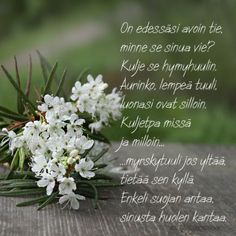 Posts about Runot/Lainatut sanat on Marlan jutut Finnish Words, Birthday Greetings, Life Lessons, Diy And Crafts, Poems, Herbs, Life Lesson Quotes, Poetry, Life Lessons Learned