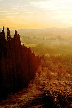Autumn near Florence #iwanttogo