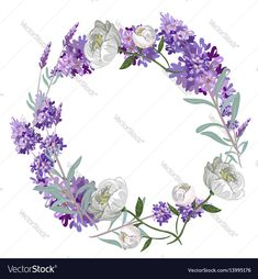 Circle of hand drawn lavender flowers . Hand drawn design for Thank you card, Greeting card or Invitation. Vector illustration. Download a Free Preview or High Quality Adobe Illustrator Ai, EPS, PDF and High Resolution JPEG versions.