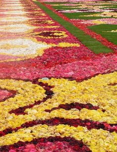 flower carpet in detail with http://www.kuldeepinternational.co.in/