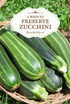 Are you sick of Zucchini yet? I have baked, saut�ed, stuffed, and grilled about as much as I can stand right now. But the plants are showing no signs of stopping and will continue producing until disease or frost takes them down. Here are 3 Ways to Preserve Zucchini to help you deal with the excess crop. Preserving Zucchini, Canning Zucchini, Pickled Zucchini, Zucchini Pickles, Preserving Food, Signs, Thermal Mass, Building Architecture, Passive Solar