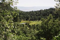 arizona forest mountains - Google Search Forest Mountain, Short Stories, Vineyard, Arizona, Mountains, Google Search, Nature, Travel, Outdoor
