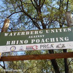 Über Instagram hier eingefügt #marakelenationalpark #marakele  http://ift.tt/1ZNAWt1 - Malariafreie #Wildreservate in #südafrika #waterberg #kransberg #southafrica #malariafree #gamereserves #wb1001rb #wbesaesa @south_africa_through_my_eyes #wbpinsa #safari #photographicsafari #urlaub #holiday #photooftheday #reisen #afrika #africa #travelblogger #germanbloggers #reiseblogger #safarilodge #malariafreesafari #gamereservesouthafrica #africa_nature #nature_africa
