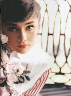 Poll: Miley Cyrus, Audrey Hepburn or Elvis? 10 points: easy!?