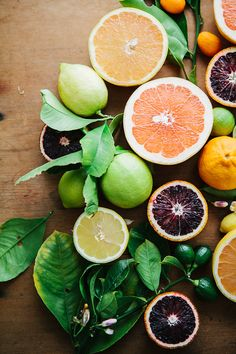 "Color Theory Therapy| Serafini Amelia| ""Citrus Art""…"