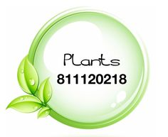 Grabovoi number sequence for Plants.  811120218