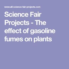 Science Fair Projects - The effect of gasoline fumes on plants